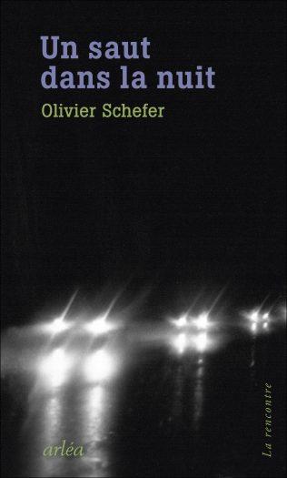 Couverture du roman Un saut dans la nuit écrit part Olivier Schefer